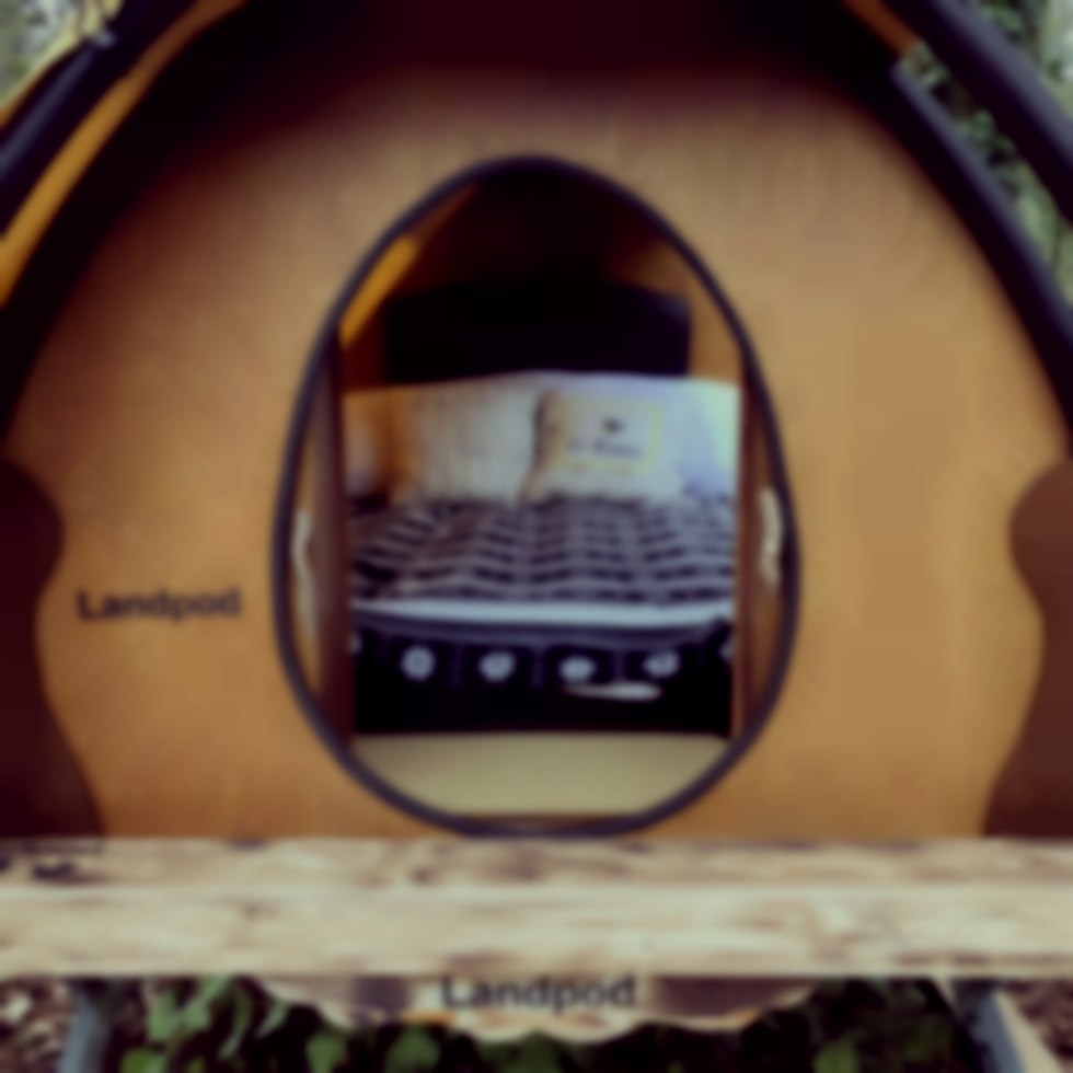 Luxury glamping pod