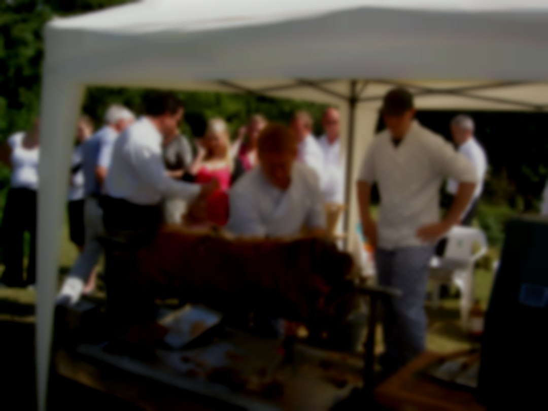 CATERED HOG ROAST