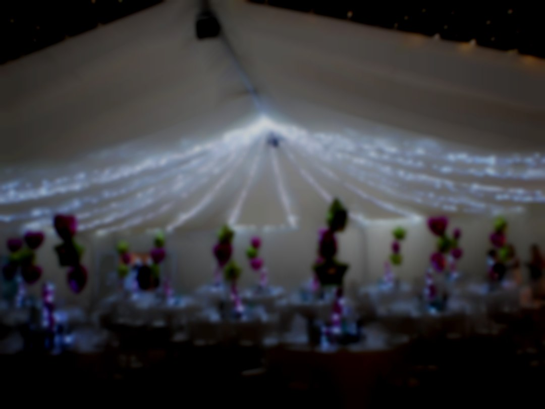 StageGear Rentals Wedding Services