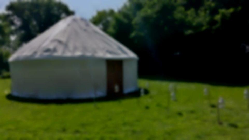 6m diameter yurt