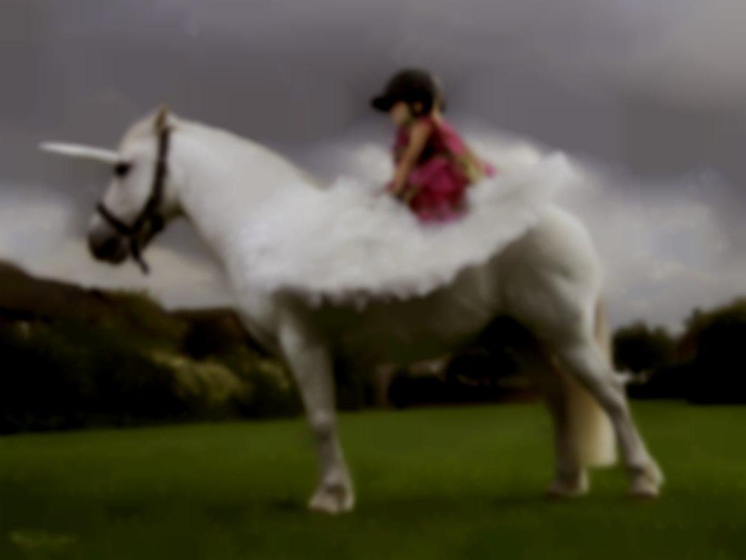 Pegasus Pony Party
