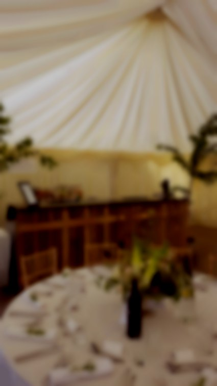 Our 10-ft 'Driftwood Bar' at Pengenna Manor