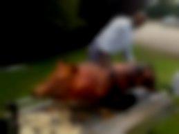 Hog BBQ