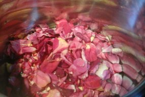 Rose petals #lovetoforage