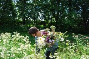 Picking sustainable garden flowers