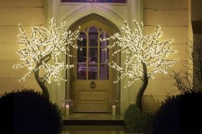 Twilight Trees, The LED Tree Company