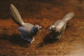 Love Birds and Wedding Rings