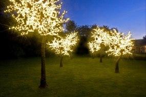 Twilight Trees, The LED Tree Company