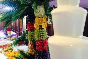 chocolate fountain hire fruit tree display