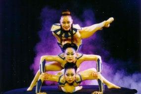 Stardust Entertainment Agency