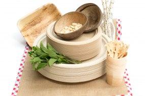 natural biodegradable plates
