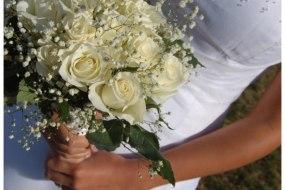 Alisha's Events Photography wedding photographer