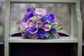 Violets and Velvet