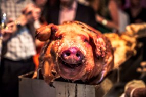 trufflehunters hog roast