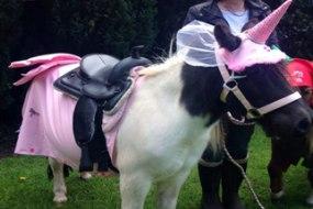 Lollipop Pony Parties