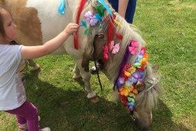 Pony Parties 2 U