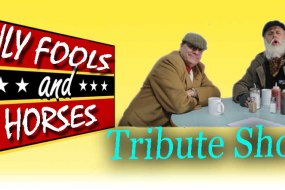 Only fools and horses tribute show for all events