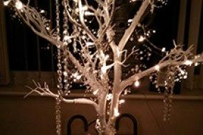 Wish Tree Hire
