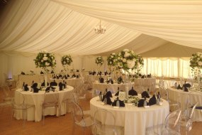 Olive Marquees