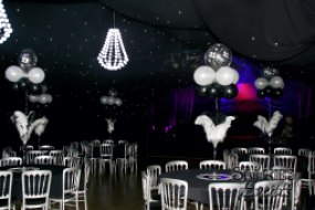 Slinkies Events Starcloth Ceiling Draping