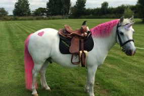 Fluffy Minion Unicorn Pony Party