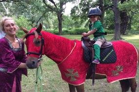 Red Knight & Robin Hood Pony Party