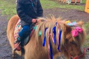 Raspberry Fields Pony Parties