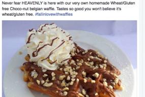 Gluten Free Waffles -