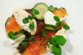 Cured salmon starter