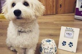 Pet Prints & Gifts