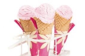 Pink Flamingo Ice Cream & Fizz