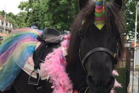 A Pony at my Party