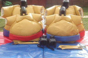 Sumo Wrestling from £40