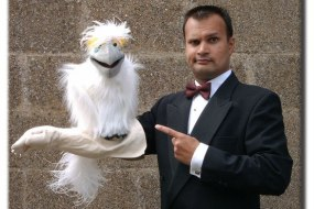 Daniel Dee - Ventriloquist and Entertainer