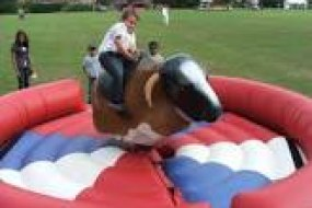 Rodeo Bull Hire in Cumbria
