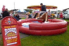 Rodeo bull hire Norfolk