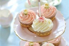 Mmm Yummy Cakes