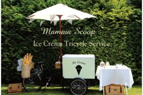 Mamma Scoop Ice Cream Tricycle