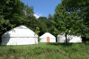 A perfect campsite for three of our glamping yurts