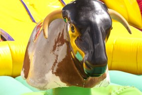 Rodeo Bull Hire | Inflatables