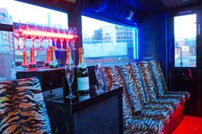 the bar in the tiger print party bus