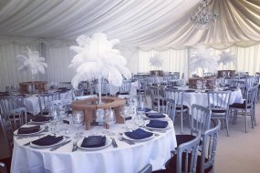 Feather centrepiece hire in Hertfordshire, Bedfordshire, Essex & surrounding areas