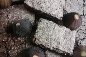 Home-Made Chocolate Brownie With Figs