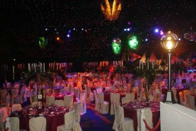 Venetian masked ball party