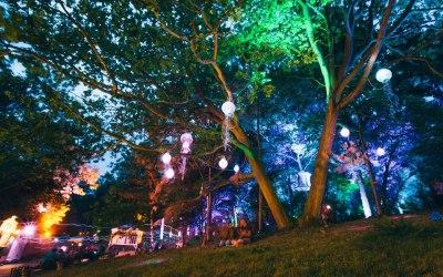 Atmospheric Festival Lighting - Bassline Productions