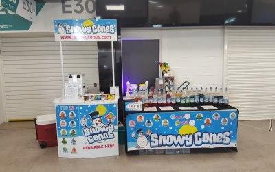 Snowzone 4