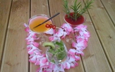 Cocktails,mocktails?