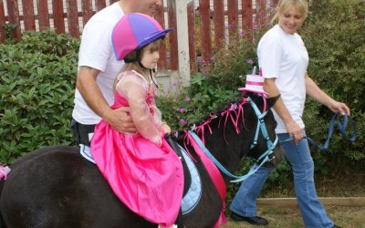 Yorkshire's Party Ponies  6
