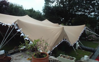 Garden party - we fitted stretch tent over plants, patio and garden