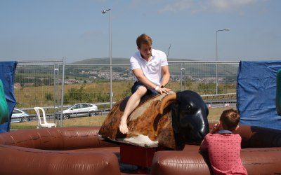 Rodeo Bull hire wales